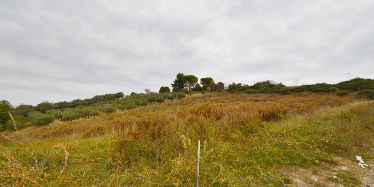 realizza-casa-montesilvano-colli-terreno-agricolo-06